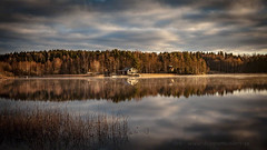 20171103003053 (koppomcolors) Tags: koppomcolors österwallskog värmland varmland sweden sverige scandinavia