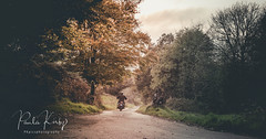 The Biker (PKpics1) Tags: bike biker road lane sunset autumn ride trees landscape exmoor