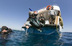 1106_03a (KnyazevDA) Tags: disability disabled diver diving deptherapy undersea padi underwater owd redsea buddy handicapped aowd egypt sea wheelchair travel amputee paraplegia paraplegic