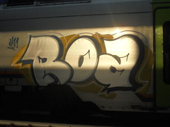 029 (en-ri) Tags: roa bianco nero arancione train torino graffiti writing