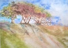 Aquarelle. Paysage (2). 18x26 cm.. (couleur.indigo) Tags: aquarelle pinceau paysage papier watercolor landscape arbres trees
