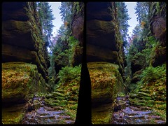 Crevice at Hell's ground 3-D / Stereoscopy / CrossEye / HDR / Raw (Stereotron) Tags: saxony sachsen saxonswitzerland sandstone mountains nationalpark sächsischeschweiz suspiciouslymeasured forest woods outback backcountry wilderness indiansummer autumn fall europe germany crosseye crosseyed crossview xview cross eye pair freeview sidebyside sbs kreuzblick 3d 3dphoto 3dstereo 3rddimension spatial stereo stereo3d stereophoto stereophotography stereoscopic stereoscopy stereotron threedimensional stereoview stereophotomaker stereophotograph 3dpicture 3dglasses 3dimage twin canon eos 550d yongnuo radio transmitter remote control synchron kitlens 1855mm tonemapping hdr hdri raw