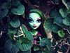 (Linayum) Tags: venus venusmacflytrap mh monsterhigh monster mattel doll dolls muñeca muñecas toys juguetes green verde garden nature linayum