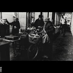 #BIKE2ANZIANO #Ravenna DSCF5211 Viabici (Viabici(c) di StefanoM) Tags: viabici bike2 bicicletta bici bike bicycle cykel fahrrad street city mono bw streetphotography chiaroscuro blackandwhite italia ravenna