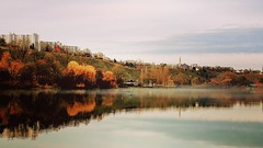 Max-Eyth-See (DrQ_Emilian) Tags: fall autumn color light mood fog foggy mist misty reflection nature outdoors trees lake travel maxeythsee stuttgart badenwürttemberg germany europe sky clouds evening sunset photography hobby calm tranquility