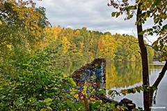 Herbstzeit (garzer06) Tags: herbstzeit herbst deutschland wasser herbstlandschaft landschaft mecklenburgvorpommern spiegelung gelb vorpommernrügen landschaftsbild landscape landschaftsfoto vorpommern landscapephotography inselrügen naturphotography insel naturfoto rügen naturephotography landschaftsfotografie