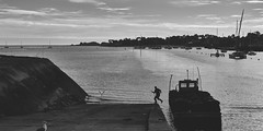 (thierrylothon) Tags: bretagne morbihan latrinitésurmer fujifilm fujixpro2 fujinonxf35f2rwr monochrome noirblanc paysage personnage publication flickr fluxapple collection portfolio saintphilibert france fr