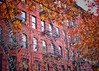 Autumn in New York (Mister Blur) Tags: hellskitchen new york city nyc building stairs autumn leaves fall shallow depthoffield dof bokeh jazz mood nikon d7100 35mm fireescapes enotoño