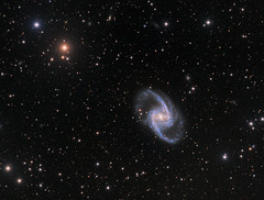 NGC1365 (Daniele Malleo) Tags: ngc1365 galaxy southern skies stars astrophotography astronomy