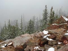 8692ex  Rockies September snow (jjjj56cp) Tags: snow snowy evergreens rockymountainnationalpark rmnp nationalpark rockymountains rocky mountains clouds snowclouds foggy misty continentaldivide co colorado p900 jennypansing
