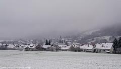 Its winter in Dahenfeld. (andreasheinrich) Tags: landscape village fields forest winter december morning foggy cold germany badenwürttemberg neckarsulm dahenfeld deutschland landschaft dorf felder wald dezember morgen neblig kalt nikond7000