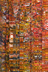 Autumn reflections (James_D_Images) Tags: glass windows building reflection trees autumn fall foliage colourful red green orange frame panes lines abstract