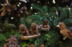 Critters (Millie Cruz *) Tags: nature dry pine critters animals lights handmade brandywinerivermuseumofart chaddsford pa christmas ornaments