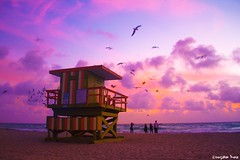 O, Sunlight! (gusdiaz) Tags: florida sunrise south beach amanecer sea seagulls birds aves gaviotas nubes clouds colorful beautiful canon canonphotography nature naturephotography awesome amazing fall autumn otoño