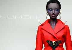 KyoNia (NuminaDolls) Tags: numina numinadoll numinadolls dollcis doll dolls fashion fashiondoll fashiondolls fashionbjd fbjd fashionballjointeddoll resindoll resinbjd resindolls africandoll inyoka paulpham balljointeddoll bjd
