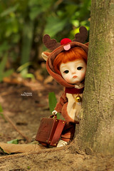 Hiding from Santa... (Passion for Blythe) Tags: reindeer christmas santa hidding bjd ming secretdoll tiny cute