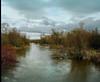 Floodstage (jim peterson2012) Tags: colvilleriver newashington ektar100 mamiya7 springrunoff