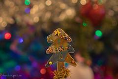 macro-christmas bokeh (harakis picture) Tags: macromondays memberschoice bokeh