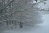 L'Aubrac l'hiver au col de Bonnecombe (Michel Seguret Thanks for 11,4 M views !!!) Tags: france nature natur natura massifcentral froid cold frio kalt saison season winter inverno invierno neige snow neve schnee michelseguret nikon d pro