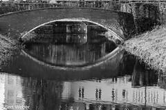 Unbenannt (weber.bert) Tags: makro brühl analogefotografie blackwhite inbiancoenero noiretblanc grauwertabstufungen sw