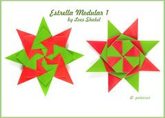 P80103-162406m (polelena24) Tags: origami star modular square