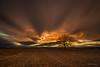 Tiempo de luz (AvideCai) Tags: avidecai canon1635 filtro largaexposición arbol atardecer paisaje nubes cielo sobarriba