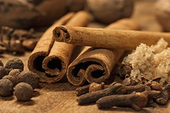 Cinnamon Sticks (ertolima) Tags: hmm macro macromondays stick cinnamon cloves allspice spice brownsugar brown