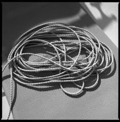 to be cleared (ukke2011) Tags: hasselblad503cw planarcfe8028 ilforddelta100 selfdeveloping rodinal 125 film pellicola 6x6 square 120 bw mediumformat rope cima analog analogico blackandwhite