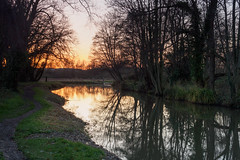 Sunset along the Wey in December-EC140413 (tony.rummery) Tags: burpham em10 eveningsun guildford mft microfourthirds omd olympus reflections riverwey sunset towpath trees wey winter england unitedkingdom gb