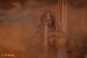 Madonna (Pier Giorgio Buda) Tags: parma madonna murales