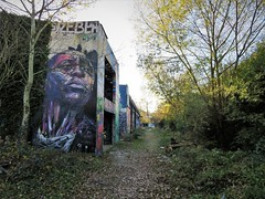 Hopare / Paris Palaiseau - 26 nov 2017 (Ferdinand 'Ferre' Feys) Tags: paris france streetart artdelarue graffitiart graffiti graff urbanart urbanarte arteurbano ferdinandfeys urbex hopare