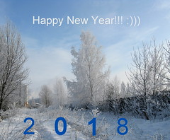 Happy New Year 2018 from Belarus. :))) (halina.reshetova) Tags: newyear happynewyear happynewyear2018 celebration holiday festive mood festivemood atmosphere festiveatmosphere mozyr belarus gomelregion winter snow snowy snowcapped snowcrowned lotofsnow trees snowcappedtrees treesinhoarfrost grassinhoarfrost grassinthesnowflakes hoarfrost sky bluesky frost beauty beautifulwinter white dark blue canon canonpowershota720is 15122010 29122017 fabuleuseenfêtesf