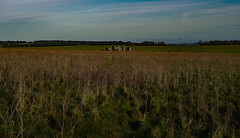 Stonehenge, way off in the distance. (Dennis Kallmer) Tags: stonehenge