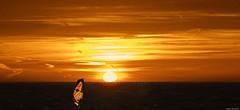 Planche à voile plage de la Garonne au Pradet (jmlpyt) Tags: vitesse activitéavecmouvement ciel contrejour enhaut fairedelaplancheàvoile fondsdenuage france horizontal navigationàvoile nuage personnehumaine photographie plancheàvoile soleil sport sportaquatique sportsextrêmes surf surréaliste uneseulepersonne vent voile beauté beautédelanature chaleur cielromantique coucherdesoleil crépuscule eau effetlumineux grandiose heureducoucher imageencouleur jaune luminosité lumièredusoleil nature orangecouleur paysage paysages photo prisedevueenextérieur reflet relaxation romantisme rose scènetranquille violet zen été le pradet côtedazur provencealpescotedazur var provence