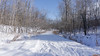 Sentier au Parc du Lac Beauchamp en Hiver, Gatineau, Canada - 4188 (rivai56) Tags: gatineau québec canada ca sentier parcdulacbeauchamp hiver winter neige snow sonyphotographing nature trail lakebeauchampparkéwinter