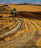 Tuscany, filming location of the movie Gladiator (lfreutsmiedl) Tags: toscana tuscany gladiator filminglocation