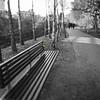 Baubles! ~~~HBM ~~ HMBT (Wendy:) Tags: ucd belfield campus tiltshift bench selectivecolour hbm hmbt