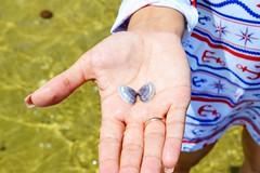 MACEIO 0074 (tinancv) Tags: maceio alagoas brach praia