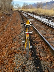 BESIDE TRACKS (Michial chace) Tags: yellowbike bicycle bike marco whiteseat touring refurbished trail trailriding tracks singletrack rrtracks armybags