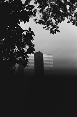 into nothingness it fades / (luustra) Tags: ilford panf plus 50 canon ft ql black white