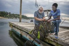(Stony Brook University) Tags: university professor jeffreylevinton somas student quemarblake oysters stonybrookharbor schoolofmarinesciences stonybrook newyork