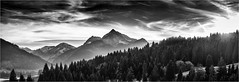 When the Christmas Trees were free... (Ody on the mount) Tags: allgäu anlässe berge em5 himmel mzuiko40150 omd olympus panorama wanderung wolken bw clouds monochrome mountains sw sky enge tirol österreich at