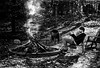 Friendsgiving (nateabrown) Tags: thanksgiving friends michigan puremichigan bw fire bonfire boardgames games contrast grain ilford analog black white craft minolta 400iso 3200iso