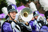 Wildcat Alley 'Cat (NUbands) Tags: avsphoto b1gcats date1022 evanston illinois numb numbhighlight northwestern northwesternathletics northwesternuniversity northwesternuniversitywildcatmarchingband unitedstates wildcatalley year2017 band college education ensemble horn instrument marchingband mellophone music musicinstrument musician school university