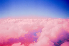 Color the Sky Pink (thomas_anthony__) Tags: kodakportra400 film 35mm analog sky aerial cloud clouds horizon pink magenta color colorful candy puffy texture vibrant light lightleak lightleaks vintage retro vaporwave blue plane dream dreams dreamy daydream dreamscape