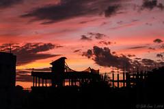 The Last Evening, 2017 (Galib Emon) Tags: sunset sky dusk tree thelastevening2017 twilight silhouette explore beauty colors happynewyear explorebangladesh galibemon outdoor landscape endoftheyear nature endoftheday 31122017 canoneos7d chittagong bangladesh building photoart flickr efs18135mm lastlight goodbye2017
