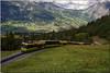 Train du Kleine Scheidegg - Grindelwald Suisse (jamesreed68) Tags: bernois oberland suisse schweiz nature grindelwald canon eos 600d