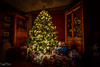 ⭐️ ⭐️ ⭐️ Christmas Glow ⭐️ ⭐️ ⭐️ (SonjaPetersonPh♡tography ♡ Away Mar. 21-25) Tags: christmaslights tree treelights longexposure christmas nikon nikond5300 2017 lights merrychristmas nightphotography hdr