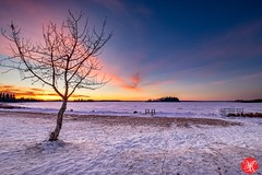 A winter sunset (Kasia Sokulska (KasiaBasic)) Tags: alberta canada frozen winter cold fineart nationalpark landscape nature elkisland sunset weather snow clouds sky