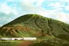 Mori Point 2 (NateKwong) Tags: landscape mori point scenic nature mountian bay bayarea moripoint